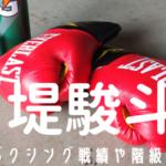 堤駿斗 戦績 階級 ボクシング