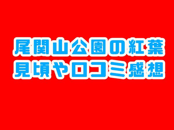 尾関山公園 紅葉 見頃