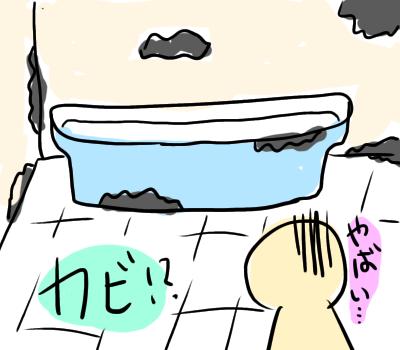 お風呂 カビ 賃貸